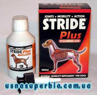 Лекарство для лечение суставов у собак замена мениска коленного сустава упражнения